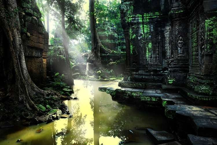 Angkor Wat Tapınak 1