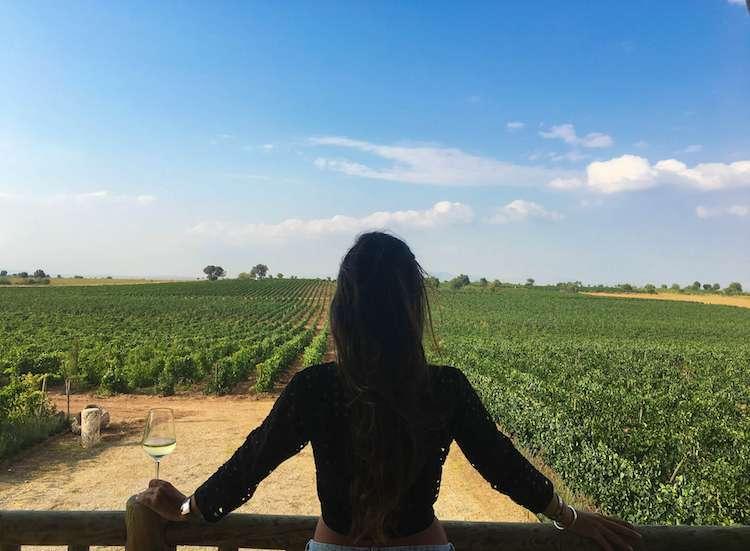 pamukkale şarapları16