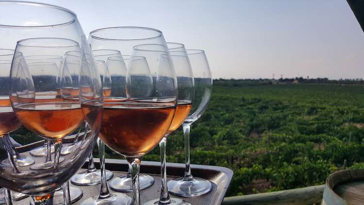 pamukkale şarapları2
