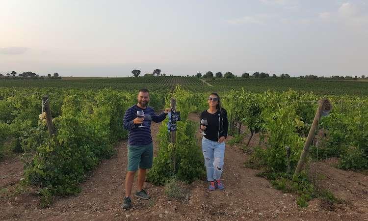 pamukkale şarapları6