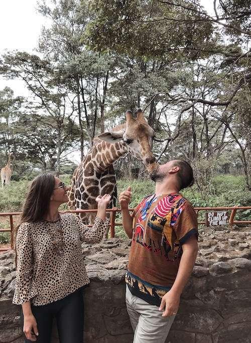 afrika turu safari turu