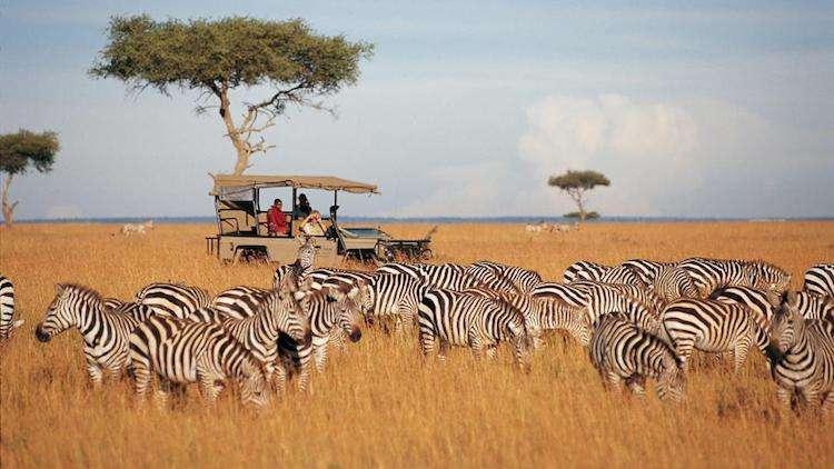 Kurban Bayramı Afrika Safari Turu